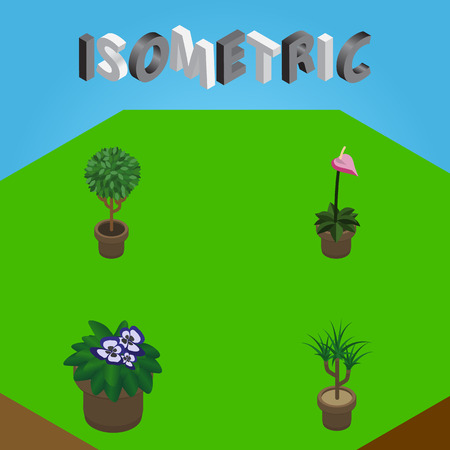 Isometric Houseplant Set Of Grower, Tree, Flowerpot And Other Vector Objects. Also Includes Plant, Botany, Flowerpot Elements. Illustration