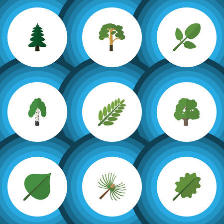 alder: Flat Icon Nature Set Of Park, Timber, Alder And Other Vector Objects. Also Includes Alder, Hickory, Tree Elements.