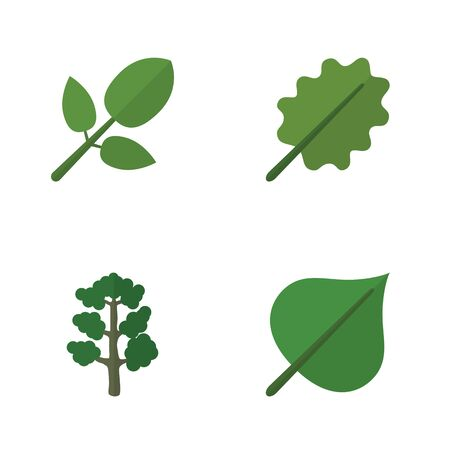 aspen leaf: Flat Icon Natural Set Of Alder, Foliage, Hickory And Other Vector Objects. Also Includes Foliage, Alder, Oak Elements.