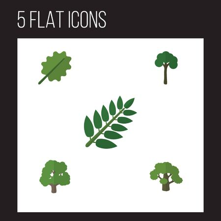 Flat Icon Bio Set Of Evergreen, Decoration Tree, Alder And Other Vector Objects. Also Includes Leaf, Alder, Acacia Elements. Illustration