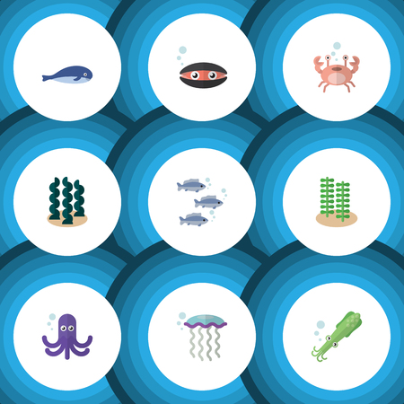 cachalot: Flat Icon Nature Set Of Cancer, Octopus, Tentacle And Other Vector Objects. Also Includes Alga, Cachalot, Cancer Elements. Illustration