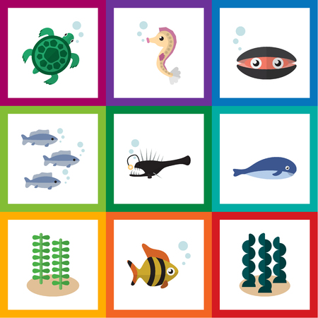 Flat Icon Nature Set Of Tuna, Scallop, Cachalot And Other Vector Objects. Also Includes Melanocetus, Scallop, Seaweed Elements.