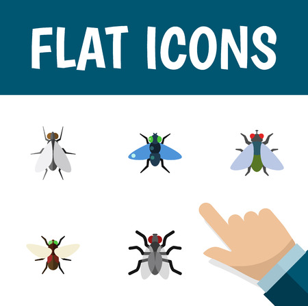 Flat Icon Buzz Set Of Gnat, Fly, Dung And Other Vector Objects. Also Includes Buzz, Dung, Gnat Elements.