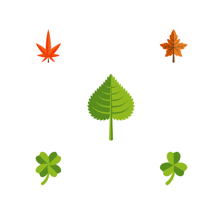 Flat Icon Foliage Set Of Leafage, Alder, Aspen And Other Vector Objects. Also Includes Alder, Hickory, Foliage Elements.