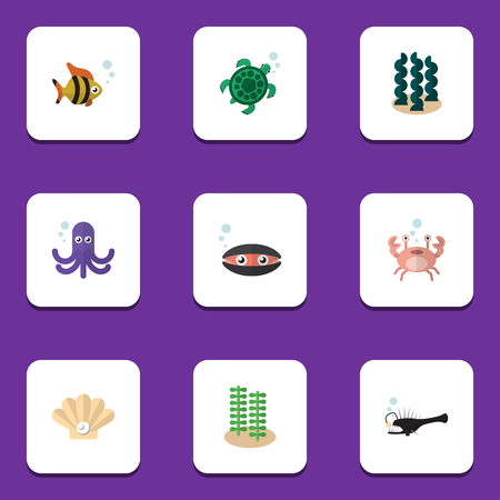 Flat Icon Nature Set Of Alga, Seaweed, Tortoise And Other Vector Objects. Also Includes Alga, Sea, Seaweed Elements. Stock Vector - 81769185