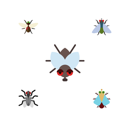 Flat Icon Buzz Set Of Fly, Bluebottle, Gnat And Other Vector Objects. Also Includes Insect, Housefly, Gnat Elements.