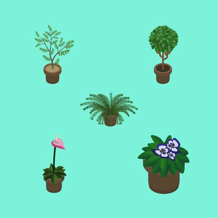 Isometric Houseplant Set Of Flowerpot, Plant, Tree And Other Vector Objects. Also Includes Flowerpot, Plant, Houseplant Elements. Illustration