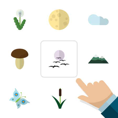 champignon: Flat Icon Ecology Set Of Monarch, Peak, Floral And Other Vector Objects. Also Includes Champignon, Mountain, Moth Elements.