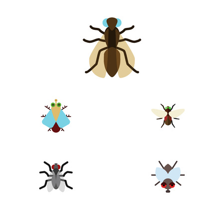 Flat Icon Housefly Set Of Tiny, Buzz, Mosquito And Other Vector Objects. Also Includes Insect, Buzz, Dung Elements.