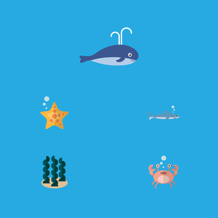 Flat Icon Sea Set Of Sea Star, Cachalot, Cancer And Other Vector Objects. Also Includes Starfish, Humpback, Gray Elements. Illustration