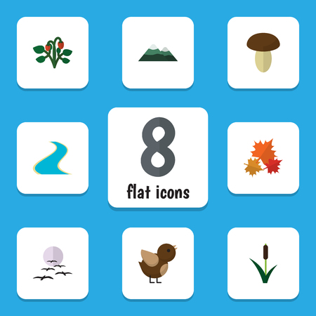 Flat Icon Nature Set Of Peak, Bird, Champignon And Other Vector Objects. Also Includes Estuary, Strawberry, Moon Elements.