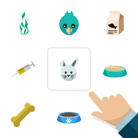 Flat Icon Pets Set Of Fish Nutrient, Seaweed, Bunny And Other Vector Objects. Also Includes Bunny, Bird, Nutrient Elements.