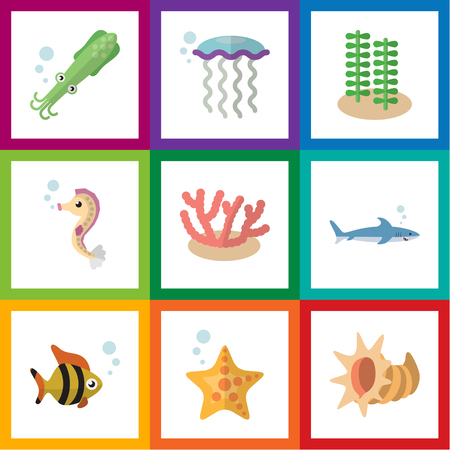 Flat Icon Sea Set Of Medusa, Algae, Hippocampus And Other Vector Objects. Also Includes Algae, Horse, Octopus Elements.