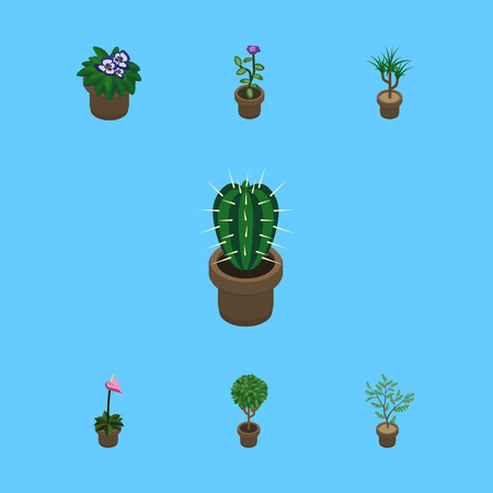 peyote: Isometric Flower Set Of Fern, Grower, Flowerpot And Other Vector Objects. Also Includes Plant, Flowerpot, Houseplant Elements.
