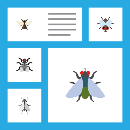Flat Icon Fly Set Of Gnat, Bluebottle, Buzz And Other Vector Objects. Also Includes Hum, Insect, Gnat Elements.