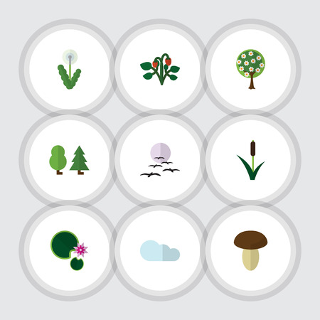 cattail: Flat Icon Natural Set Of Forest, Tree, Lotus And Other Vector Objects. Also Includes Bird, Cattail, Fruit Elements.