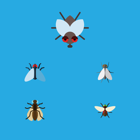 Flat Icon Housefly Set Of Hum, Buzz, Housefly And Other Vector Objects. Also Includes Hum, Dung, Mosquito Elements.