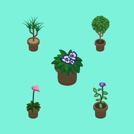 Isometric Houseplant Set Of Flower, Tree, Grower And Other Vector Objects. Also Includes Botany, Flowerpot, Pot Elements. Illustration
