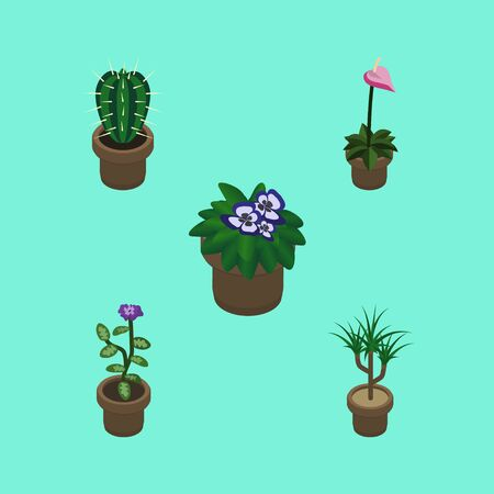 peyote: Isometric Flower Set Of Flowerpot, Flower, Houseplant And Other Vector Objects. Also Includes Flower, Flowerpot, Botany Elements.