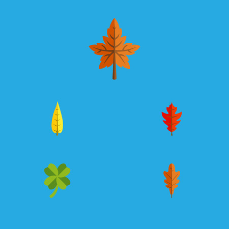 alder: Flat Icon Foliage Set Of Maple, Leafage, Alder And Other Vector Objects. Also Includes Leaf, Frond, Alder Elements.