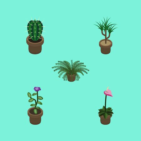 peyote: Isometric Flower Set Of Houseplant, Peyote, Plant And Other Vector Objects. Also Includes Fern, Peyote, Plant Elements. Illustration