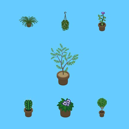 Isometric Houseplant Set Of Blossom, Plant, Fern And Other Vector Objects. Also Includes Flowerpot, Pot, Fern Elements.