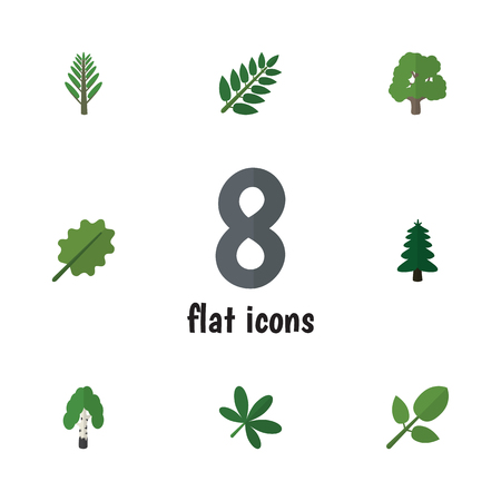 alder: Flat Icon Nature Set Of Foliage, Alder, Timber And Other Vector Objects. Also Includes Forest, Foliage, Willow Elements. Illustration