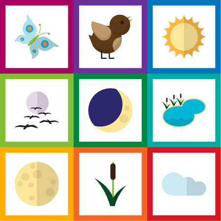 cattail: Flat Icon Bio Set Of Half Moon, Cattail, Solar And Other Vector Objects. Also Includes Bird, Sky, Lake Elements.