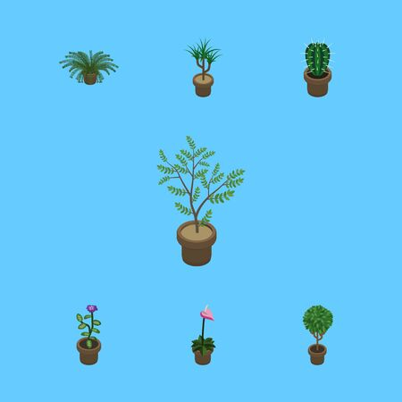 Isometric Flower Set Of Plant, Fern, Tree And Other Vector Objects. Also Includes Peyote, Plant, Pot Elements.