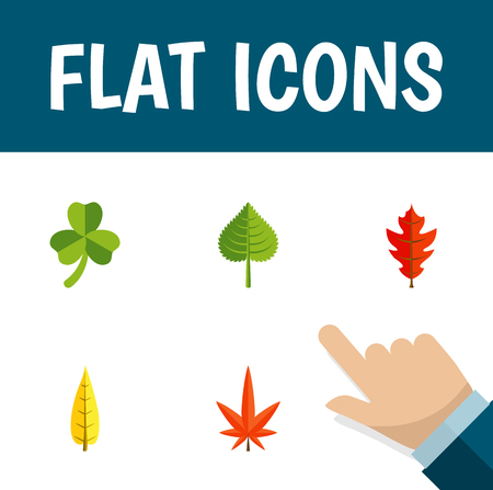 Flat Icon Foliage Set Of Leaf, Frond, Hickory And Other Vector Objects. Also Includes Oaken, Alder, Aspen Elements. Illustration