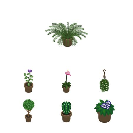 Isometric Flower Set Of Tree, Flowerpot, Plant And Other Vector Objects. Also Includes Plant, Flowerpot, Peyote Elements.