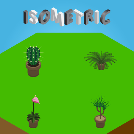 Isometric Plant Set Of Plant, Grower, Peyote And Other Vector Objects. Also Includes Pot, Botany, Flower Elements.
