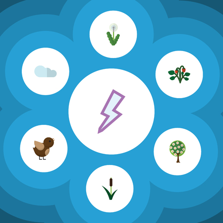 cattail: Flat Icon Natural Set Of Bird, Overcast, Tree And Other Vector Objects. Also Includes Cattail, Flower, Reed Elements. Illustration