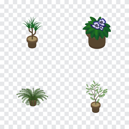 Isometric Houseplant Set Of Houseplant, Fern, Plant And Other Vector Objects. Also Includes Botany, Flowerpot, Fern Elements. Illustration