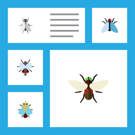 Flat Icon Buzz Set Of Tiny, Housefly, Bluebottle And Other Vector Objects. Also Includes Buzz, Insect, Housefly Elements. Illustration