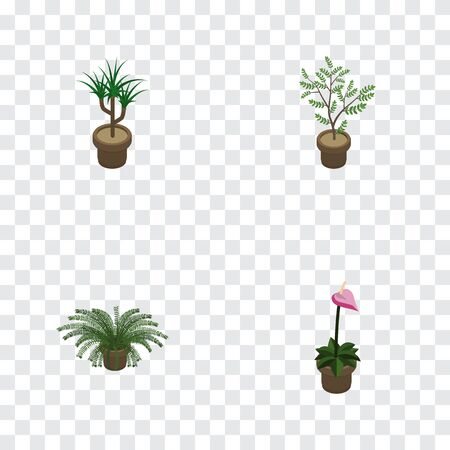 Isometric Flower Set Of Plant, Grower, Houseplant And Other Vector Objects. Also Includes Botany, Plant, Flowerpot Elements. Illustration