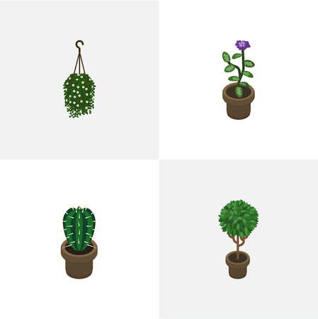 peyote: Isometric Plant Set Of Flower, Blossom, Tree And Other Vector Objects. Also Includes Hanging, Plant, Pot Elements.