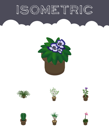 peyote: Isometric Houseplant Set Of Peyote, Fern, Flower And Other Vector Objects. Also Includes Pot, Cactus, Plant Elements.