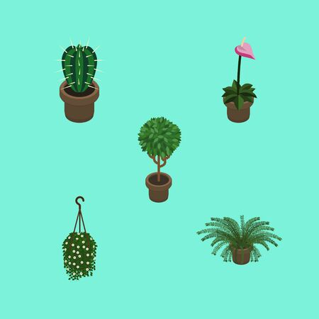 Isometric Plant Set Of Grower, Peyote, Plant And Other Vector Objects. Also Includes Flowerpot, Flower, Hanging Elements.