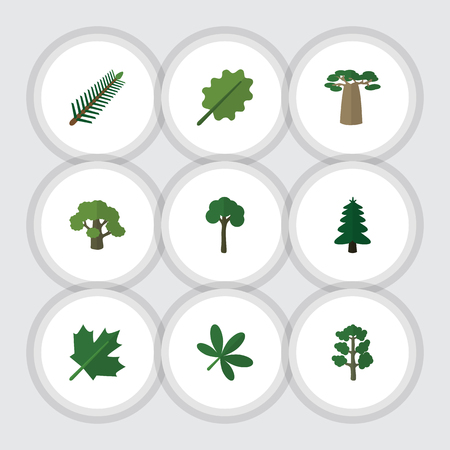 fall leaves: Flat Icon Bio Set Of Baobab, Tree, Forest And Other Vector Objects. Also Includes Alder, Oaken, Evergreen Elements. Illustration