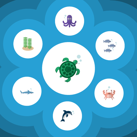 Flat Icon Marine Set Of Tortoise, Shark, Tuna And Other Vector Objects Illustration