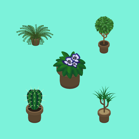 Isometric Plant Set Of Houseplant, Flowerpot, Plant And Other Vector Objects Illustration