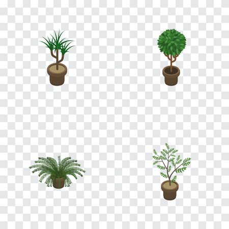 Isometric Flower Set Of Houseplant, Tree, Fern And Other Vector Objects. Also Includes Houseplant, Flowerpot, Plant Elements.