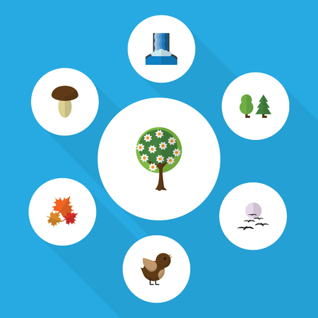 Flat Icon Nature Set Of Canadian, Cascade, Gull And Other Vector Objects. Also Includes Sparrow, Garden, Champignon Elements.