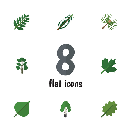 fall leaves: Flat Icon Bio Set Of Alder, Oaken, Forest And Other Vector Objects. Also Includes Maple, Oak, Hickory Elements.