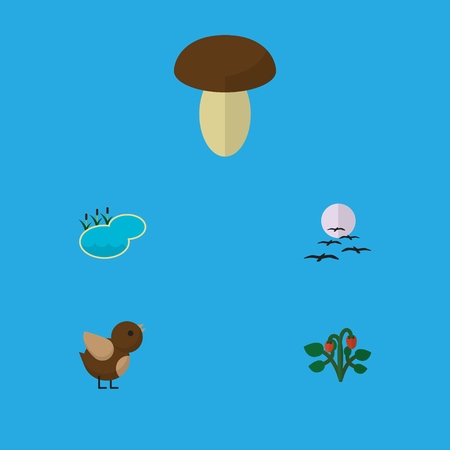 Flat Icon Nature Set Of Champignon, Bird, Gull And Other Vector Objects
