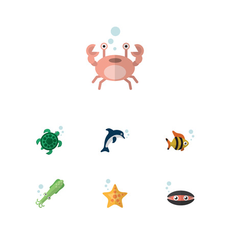 Flat Icon Nature Set Of Cancer, Tortoise, Scallop And Other Vector Objects Illustration