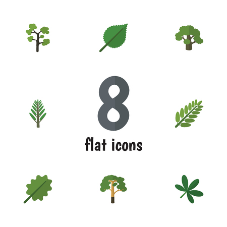 aspen leaf: Flat Icon Bio Set Of Jungle, Tree, Alder And Other Vector Objects. Also Includes Oak, Evergreen, Jungle Elements.