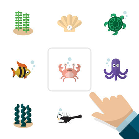 Flat Icon Sea Set Of Seaweed, Cancer, Tortoise And Other Vector Objects. Also Includes Sea, Seashell, Tortoise Elements.