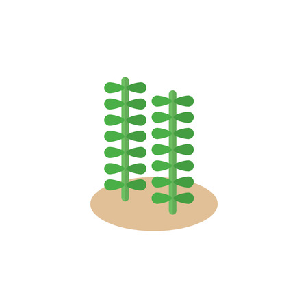 Isolated Alga Flat Icon. Seaweed Vector Element Can Be Used For Seaweed, Alga, Spirulina Design Concept.